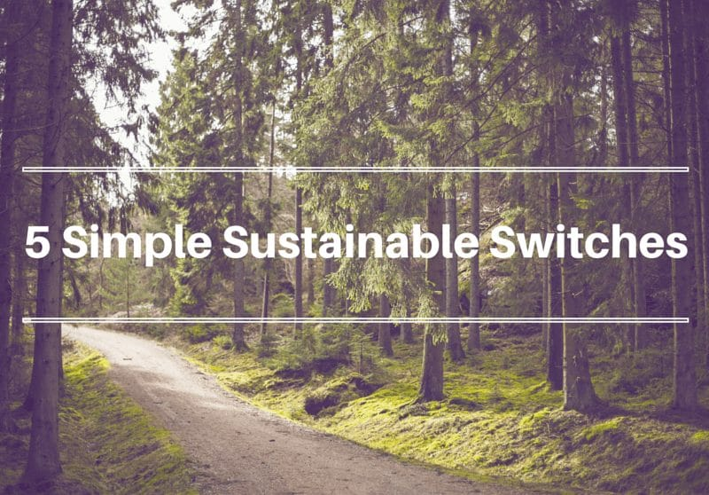 simple sustainable switches