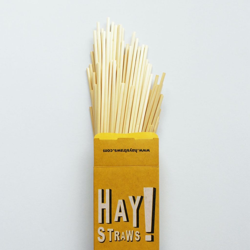 alternative to plastic straws