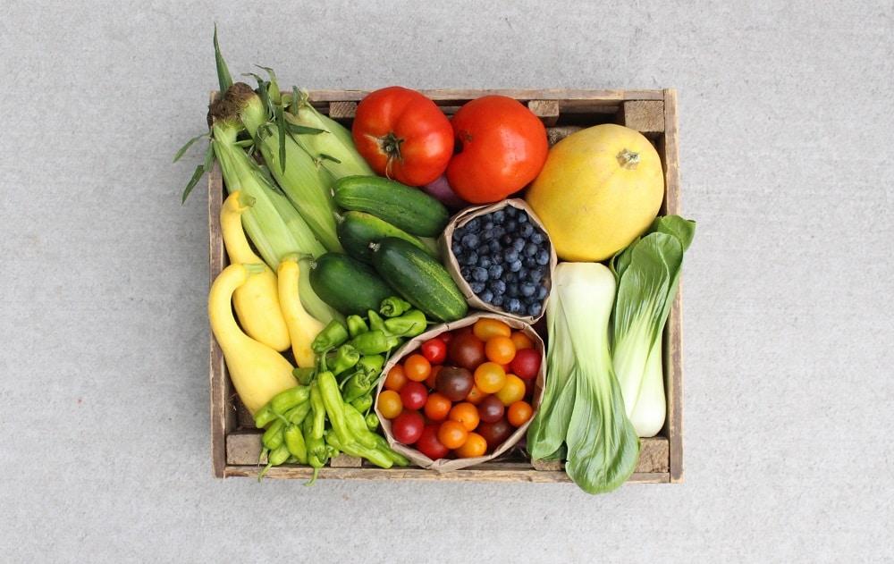 Easy Food Preservation Methods